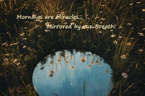 Read more about the article July 2021 Mornings are Miracles Mirrored by our Breath